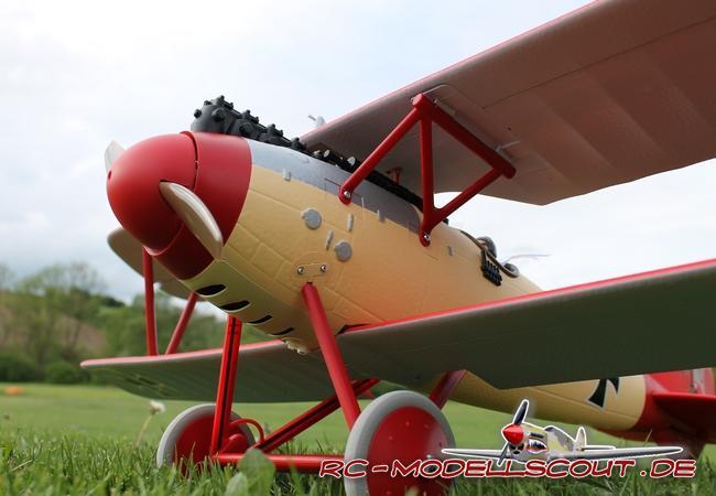 Test: Jagdflugzeug PARKZONE Albatros D.Va von HORIZON HOBBY